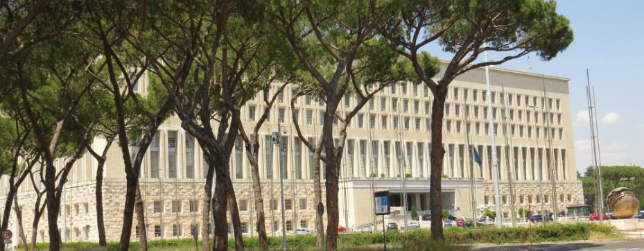 SAA 2019: le iniziative promosse dal Ministero degli Affari Esteri e della Cooperazione Internazionale